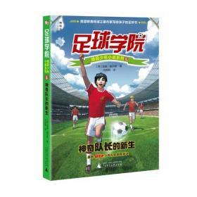 儿童文学:足球学院 5 国脚光环下的抉择 全6册批
