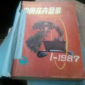 中国花卉与盆景1987年1一12期[代售]馆藏