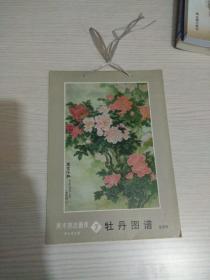 美术技法画库(7)牡丹图谱