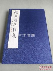 赵孟頫写经集 (16开线装 全一函一册)