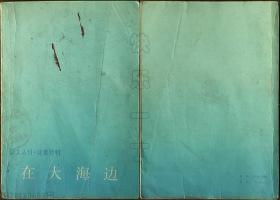 译文丛刊·诗歌特辑-在大海边