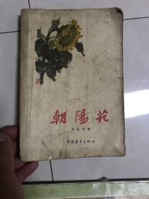 朝阳花(63年版)