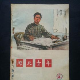 《湖北青年》  1976年第4期  封面毛泽东,封底鲁迅,华国锋任第一副主席,国务院总理,撤销邓*小*平职务[柜9-2-1]