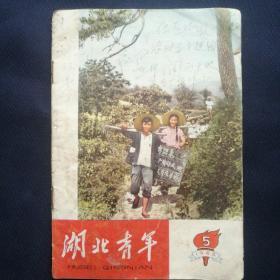 《湖北青年》  1965年第5期  学习万文南英雄事迹[柜9-2-1]