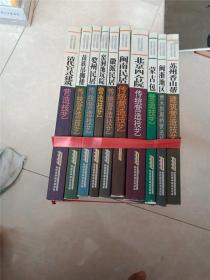 北京四合院传统营造技艺 中国传统建筑营造技艺丛书 10册全