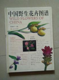 中国野生花卉图谱 精装本