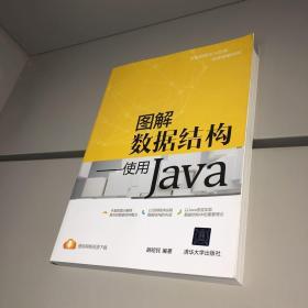 图解数据结构:使用Java 【9品++++ 自然旧 实图拍摄 收藏佳品】
