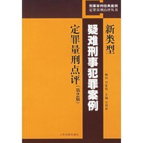 新类型疑难刑事犯罪案例定罪量刑点评(第2版)
