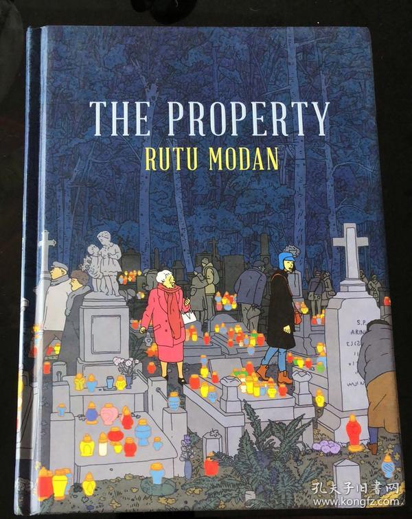 原版引进 现货 遗产 [The Property][以] 露图·莫丹 著  法国安古兰年度漫画大奖作品   爱情金钱历史与记忆的 图像小说类漫画