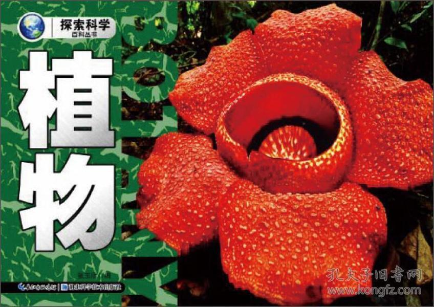 (正版)探索科学百科丛书:植物