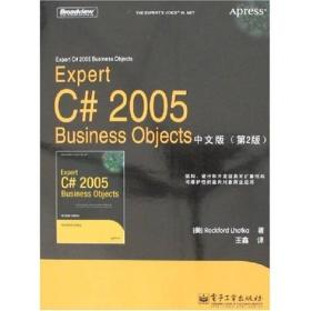 Expert C# 2005 Business Objects中文版