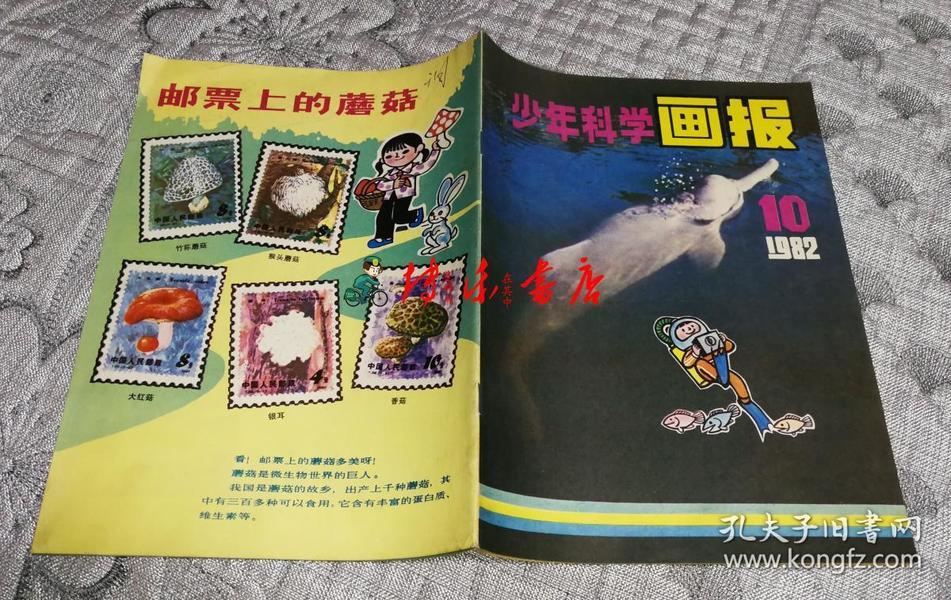 少年科学画报1982年第10期