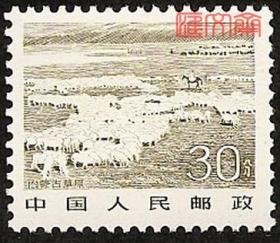 普21祖国风光-30分内蒙古草原,原胶全新邮票一枚