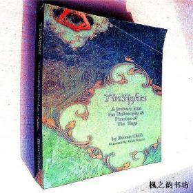 【英文原版】YinSights:A Jouney into the Philosophy & Practice of Yin Yoga by Bernie Clark(阴阳学说 16开本)
