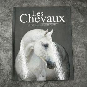 LES CHEVAUX :LES PLUS BEAUX CHEVAUX DU MONDE