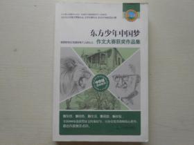 东方少年中国梦作文大赛获奖作品集中学组获奖佳作