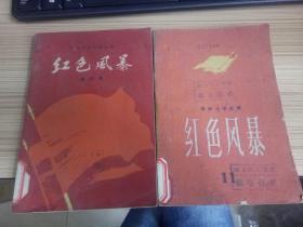 江西革命斗争故事《红色风暴》第九、十一集 两册合售
