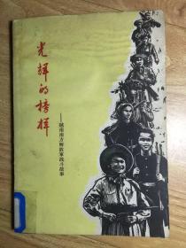 光辉的榜样-越南南方解放军战斗故事
