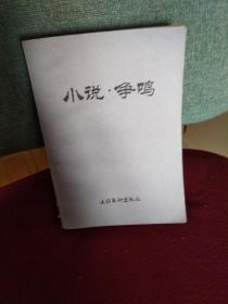 小说 争鸣   (第一辑)
