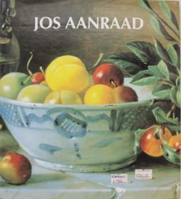 Jos Aanraad  英文原版油画艺术书