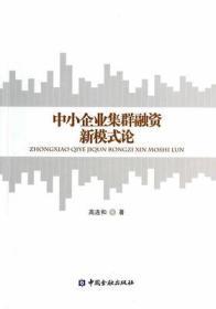 正版 中小企业集群融资新模式论/高连和 中国金融 9787504974587