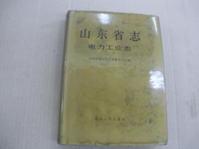 山东省志。电力工业志 (37)
