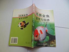 名贵金鱼鉴赏与饲养