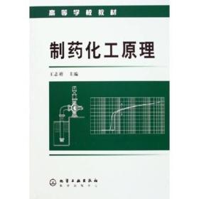 制药化工原理9787502571313 王志祥 化学工业出版