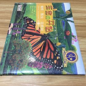 生命的开始.蝴蝶·瓢虫·苹果树