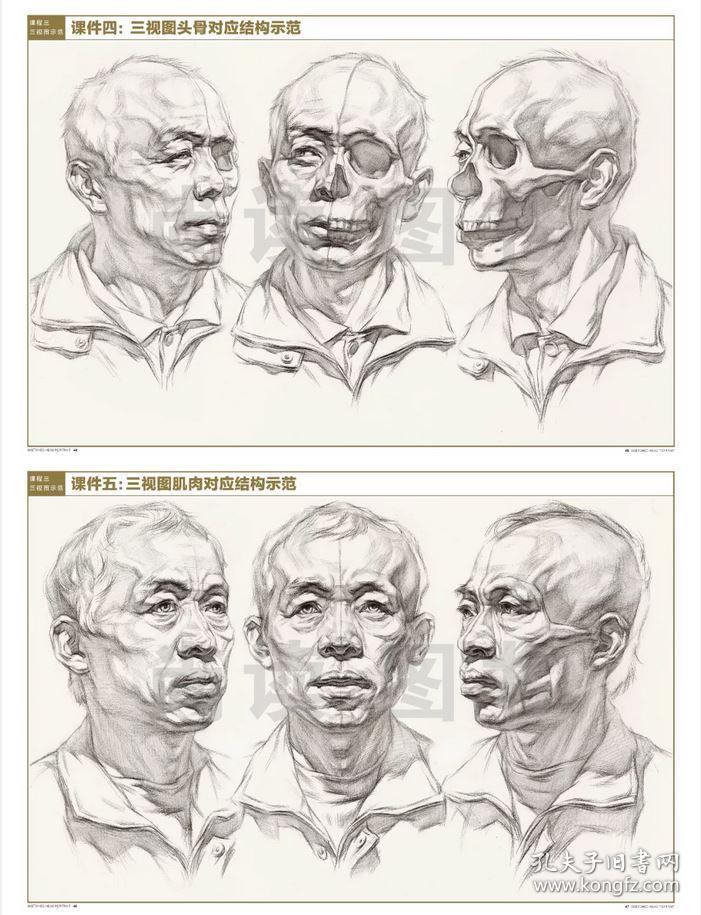0素描头像 贾杰从石膏五官到人像结构一本通 人物素描照片范画对临