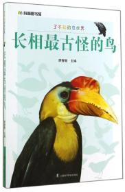 H-科普图书馆·了不起的鸟世界·长相最古怪的鸟(四色)