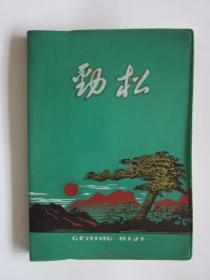 劲松·日记本·(50开)·已使用