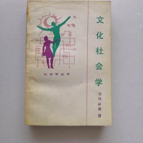 文化社会学(社会学丛书)