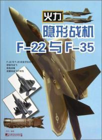 隐形战机F-22与F-35