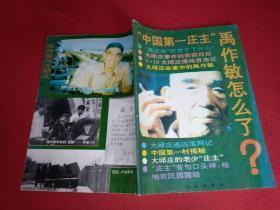 """""""中国第一庄主""""禹作敏怎么了?(武汉出版社)1993年一版一印"""