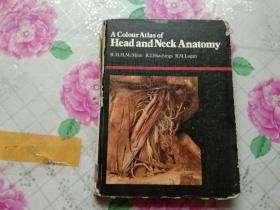 A colour  Atlas of head and neck anatomy【英文版】馆藏