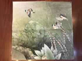 佚名工笔花鸟镜片