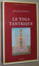 法语原版书 Le Yoga tantrique : Sa métaphysique, ses pratiques Broché – 1998 de Julius Evola  (Auteur)