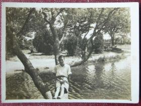 老照片:坐在树上,水中央【上海——国立暨南大学深造、南京——河海大学教授——林金麟、静华夫妇私藏系列】