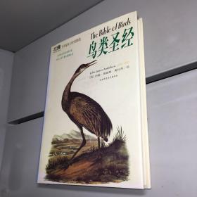 鸟类圣经:世界最伟大的鸟类图谱 (精装)【95品++++  实图拍摄 内页干净 看图下单 收藏佳品 】