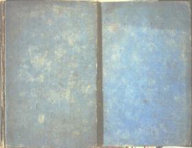 THE EXTRA PHARMACOPŒIA(备用药典)1、2共2册