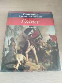 The Cambridge Illustrated History of France  【英文原版,大32开,精装本】