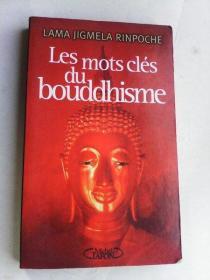 Les Mots clés du boudhisme   法文原版书