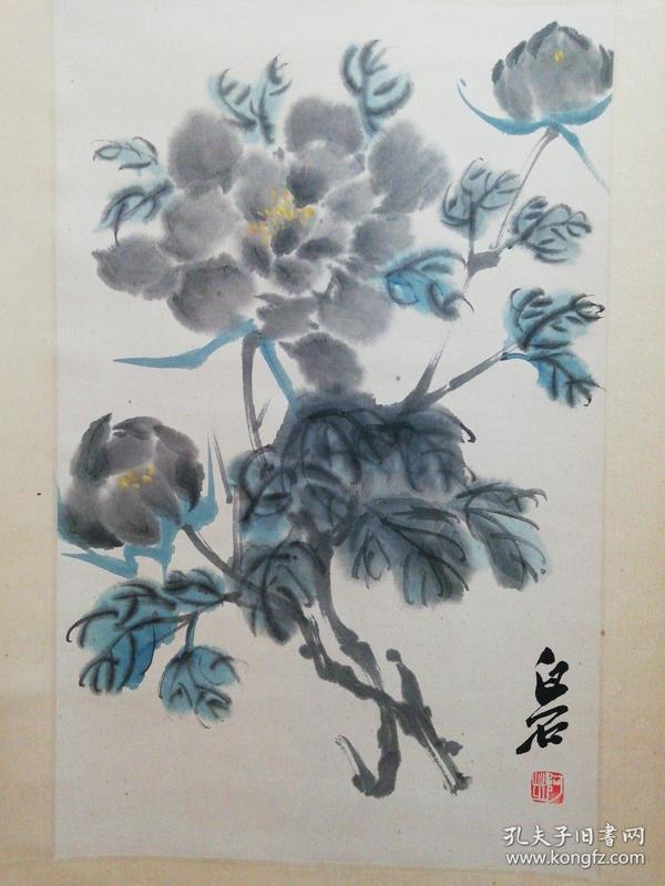 花卉 白石