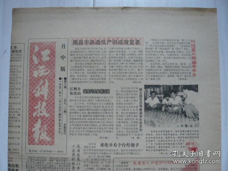 《江西科技报》月中版,1990年11月15日(庚午年九月廿九)。糖醋大蒜的制作。