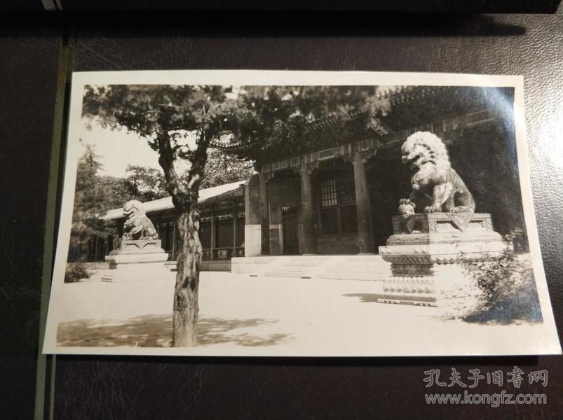 民国北京北海公园园林照片一张