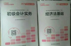 2019初级会计资格:会计专业技术资格考试专用教材(套装共2册)另送《会计职称学习卡》《二本考点速记手册》一个记事本