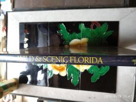 WILD&SCENIC FLORIDA