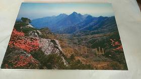 朝鲜摄影画册:九月山(中文版)(98年大16开本)