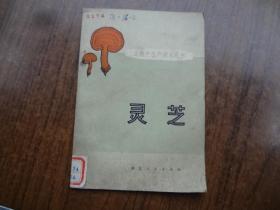 土特产生技术丛书:灵芝    未阅书自然旧     馆藏85品   封面有点老灰印   76年一版一印